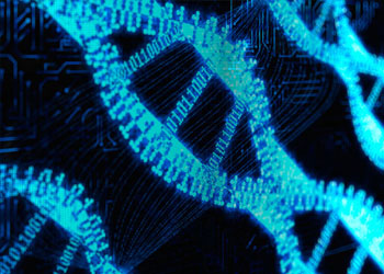 Is DNA programmable?